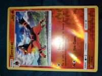 Pokemon: Torracat Reverse Holo 16/73 Common Sun & Moon: Shining Legends
